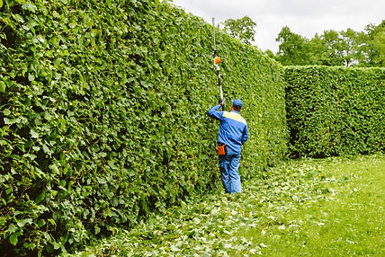 Grounds-maintenance-services-in-Birmingham-call-0121-647-7203-gh-services