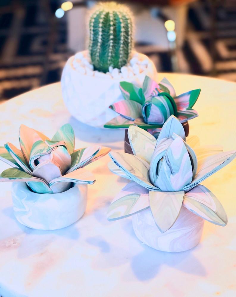 Marble Succulents