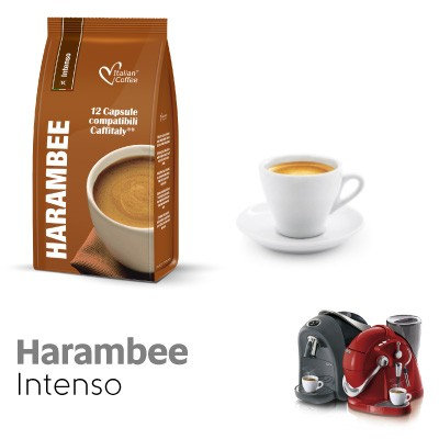 96 coffee capsules HARAMBEE blend comp. Caffitaly