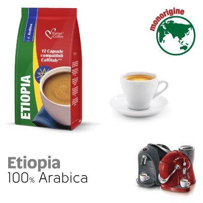 96 Kaffeekapseln Äthiopische Mischung kompatibel CAFFITALY [0,18 € / Kapsel]