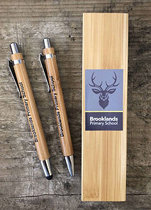 Primary School leavers bamboo pen and pencil gift set