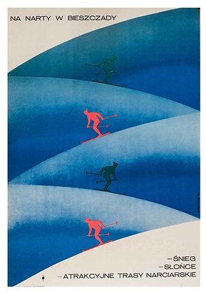 0453 - Skiing in the Bieszczady