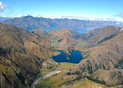 NZ-Moki