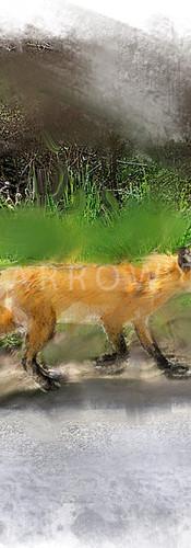 FOX TROT.jpg