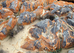 NZ-Red-Rocks