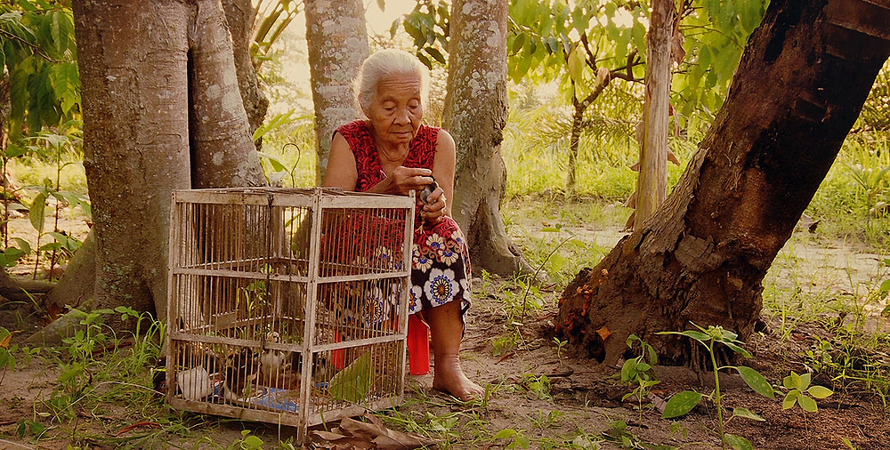 Still from The Look of Silence