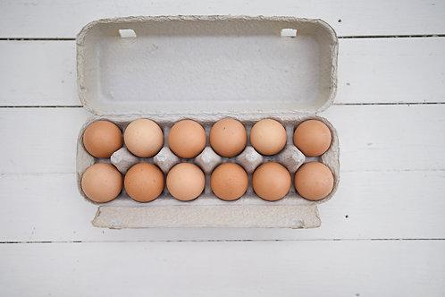 12 Burd Free Range Eggs