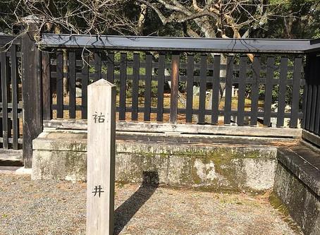 Kyotogyoen Sachinoi
