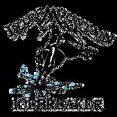 icebreaker logo.png