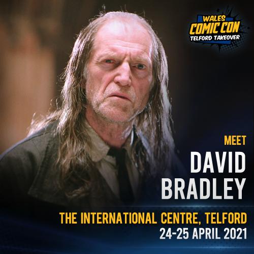 DAVID BRADLEY - SEND-IN