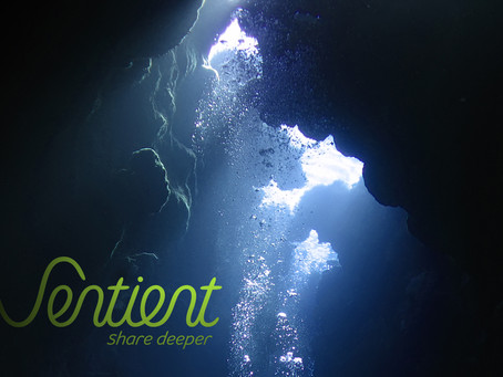 Sentient - Share Deeply