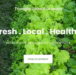 TUG_websitecapture.jpg