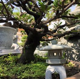 日式 迷你 石燈4