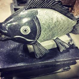 噴水鯉魚 (魚口可出水)