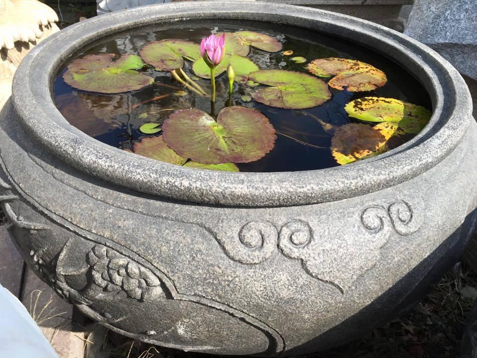 古體雕刻 水缸