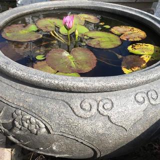 古體 雕刻 水缸