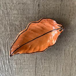 $17 - Leaf #8