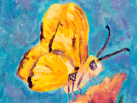Butterfly original acrylic painting