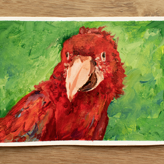 Animals of the Amazon Parrot Acrylic Painting