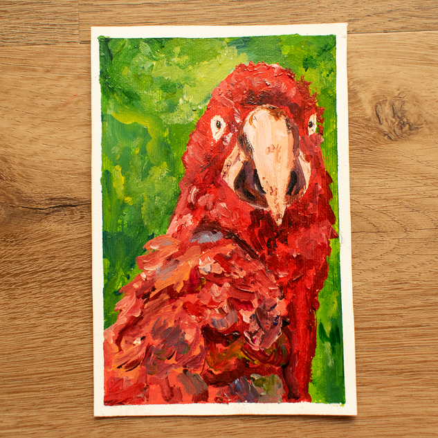 Animals of the Amazon Parrot Painting