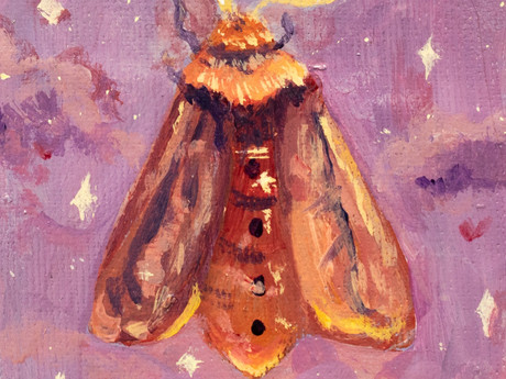 Red Moth Original Acrylic Painting