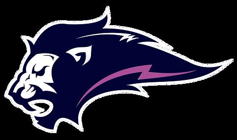 Logo-Lions-LadoEsquerdo-FEMININO.png