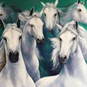 cuadros de animales, caballos, zebras, lapas