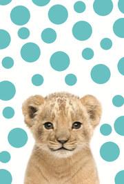 posters de animales