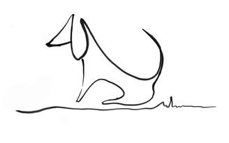 posters de perro salchicha