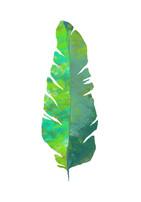 poster hoja verde