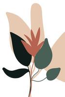 poster plantas coloridas