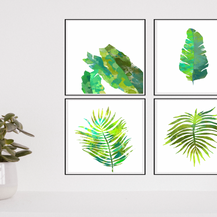 Posters Plantas