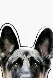 posters de animales, poster de perro pastor aleman