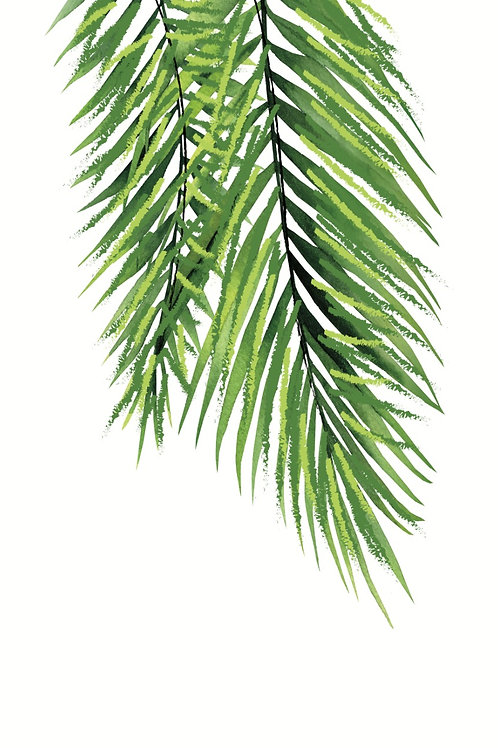 Poster planta