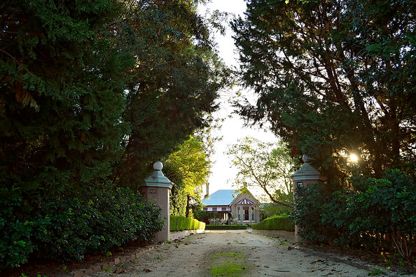 Main driveway of Burnham Grove Estate with homestead