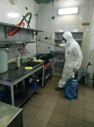 Дезинсекция ресторанов от тараканов Одесса