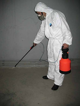 уничтожение и дезинсекция  яд  насекомых  тараканов клопов блох по одессе