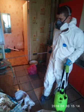 Дезинсекция квартиры от тараканов
