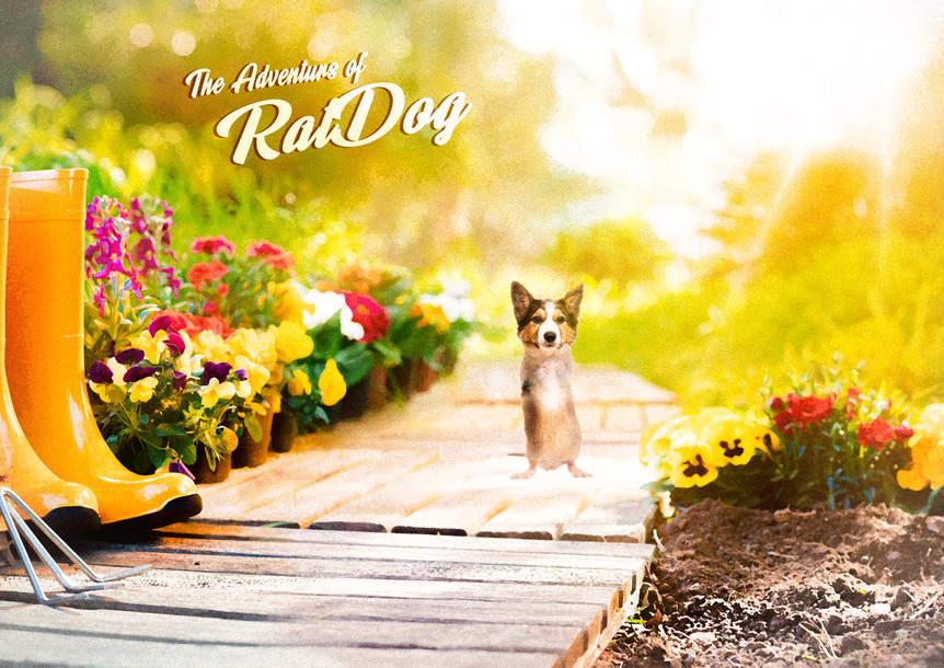 the adventurs of ratdog.jpg