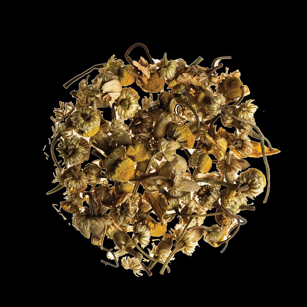 חליטות תה או חליטות צמחים