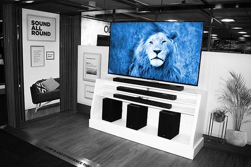 SJH_037 lion.jpg