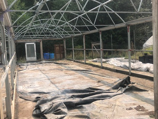 Greenhouse Moving Day