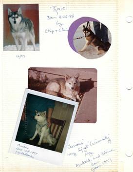 Kaiel by Chip&China 1988. Curious by Muktuk&Sheena 1977