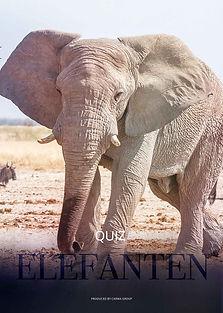 Elefanten_Quiz-LAYER.jpg