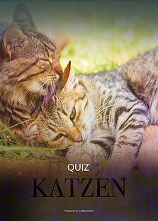 Katzen_Quiz-LAYER.jpg