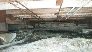 crawl space clean up