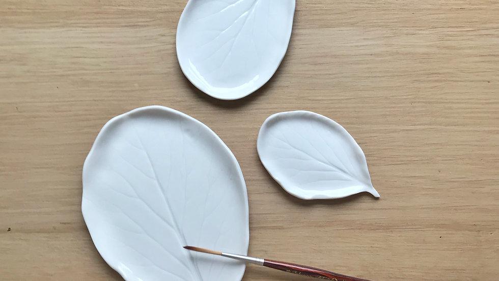 Bergenia Porcelaine Palette
