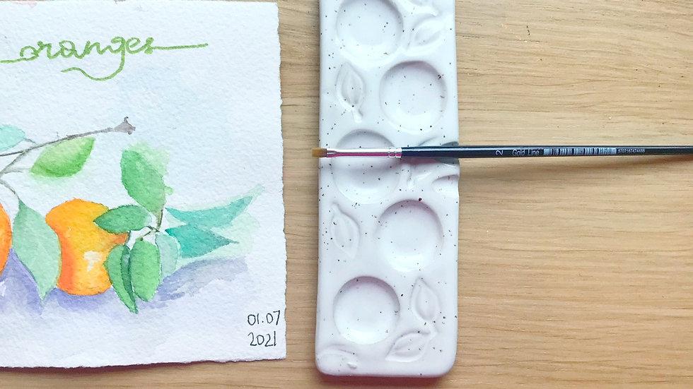 Long watercolor palette 5 sections