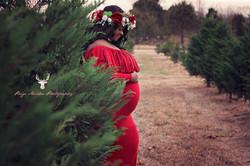 Beebe-Central-Arkansas-Maternity-Photographer-Romance-Christmas-Tree-Farm.Kensie.websized.1