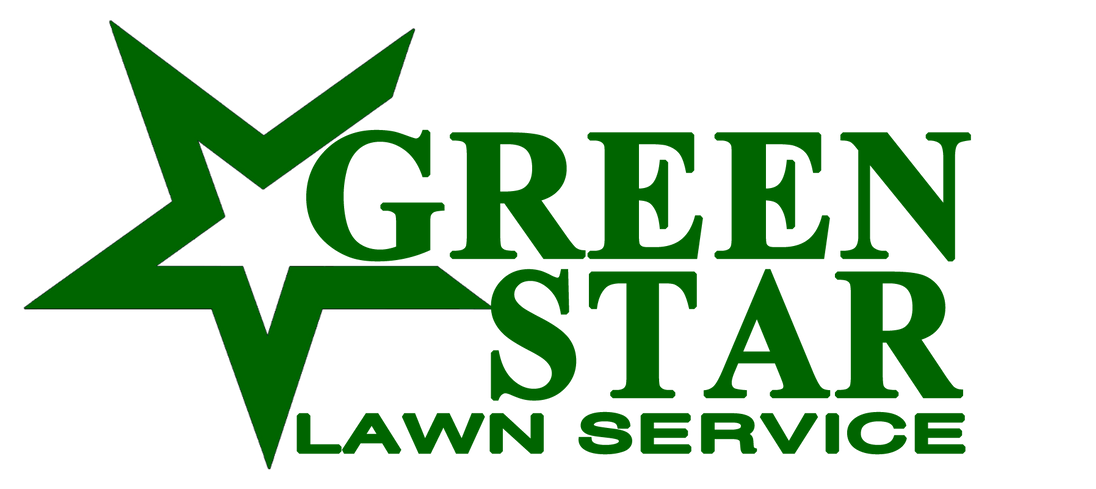 GREEN STAR LOGO.png